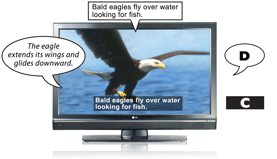 A television shows examples of captioning and description.