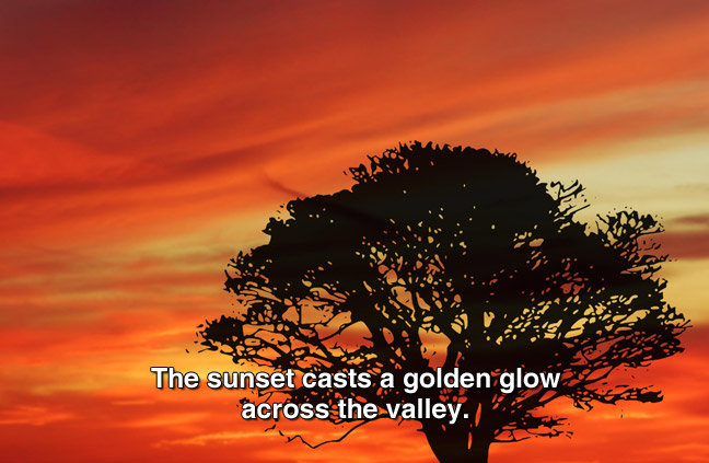orange and yellow sky and sillhouette of a tree. captions: The sunset cast a golden glow across the valley.