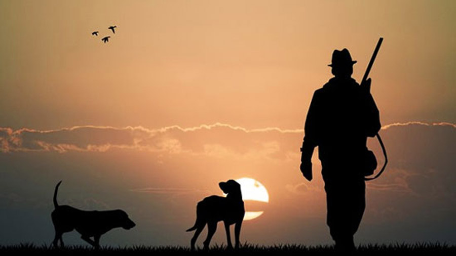 Sunset with silhouetted figures of a hunter and two dogs.