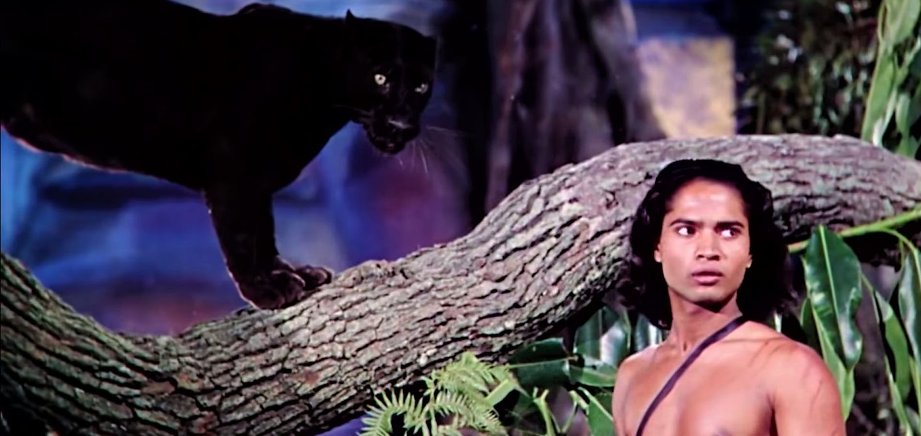 a black panther stands on a large horizontal tree branch. Mowgli, a boy with long dark hair, stands near the black panther.