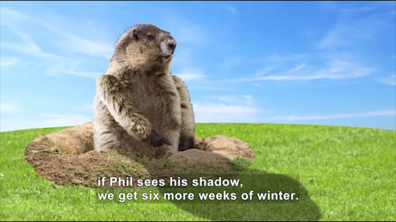 Still image from All About the Holidays: Groundhog Day