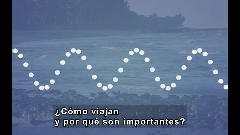 Still image from Vibrations and Waves (Spanish)