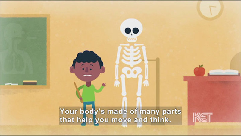 Still image from Let's Look Inside Our Body