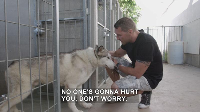 Still image from Lucky Dog: Dakota