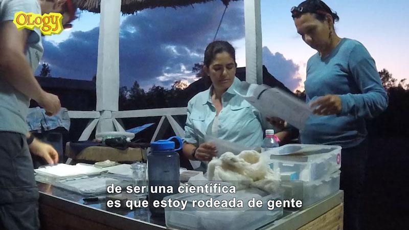 Still image from Meet the Ologist: Ana Luz Porzecanski (Spanish)