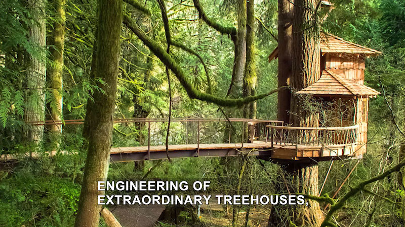 Still image from The Henry Ford Innovation Nation With Mo Rocca: Luxury Tree Houses