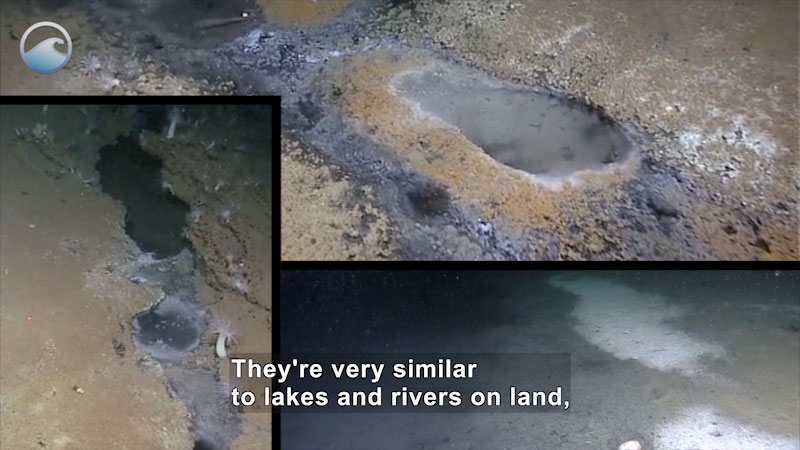 Still image from Deep Sea Dive: Lakes in an Ocean