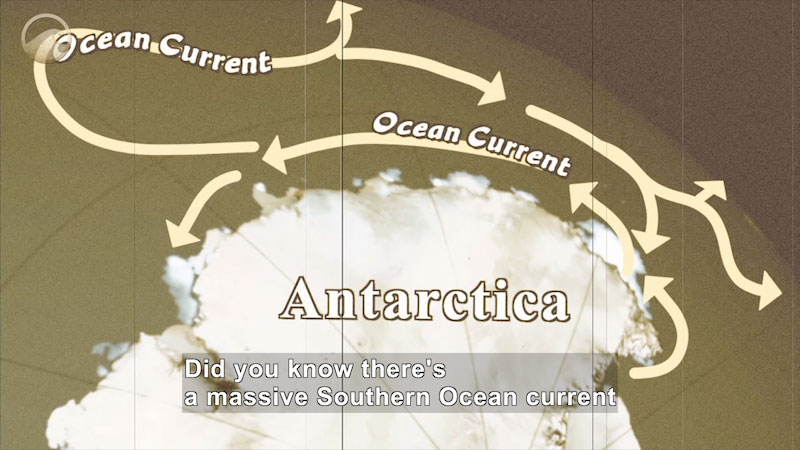 Still image from News of the Day: Southern Ocean Current Found