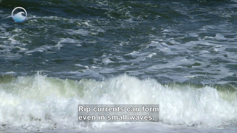 Still image from Danger Zone: Rip Current Science