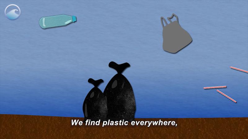 Still image from Trash Talk: Plastics