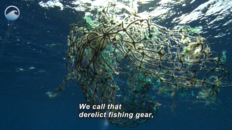 Still image from Trash Talk: What Is Marine Debris?