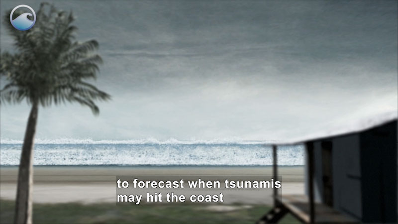 Still image from Danger Zone: Tsunami Science--10 Years Since Sumatra