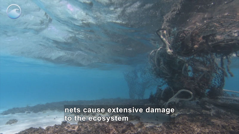 Still image from Nets to Energy