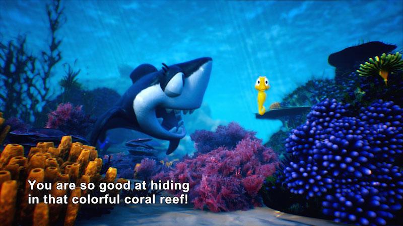 Still image from Marvie's Pick: Seanna's Ocean Friends
