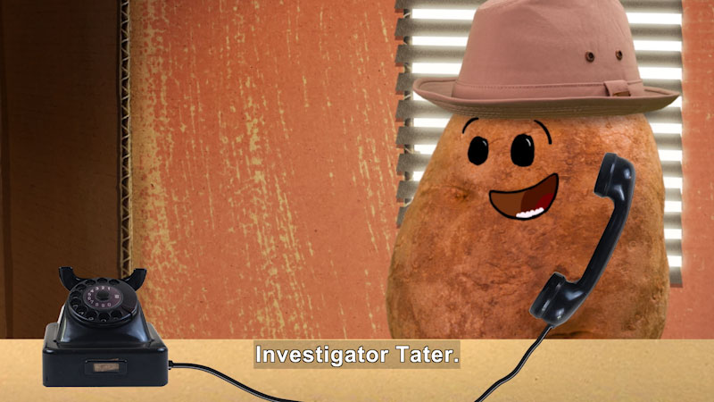 Still image from Marvie's Pick: Investigator Tater