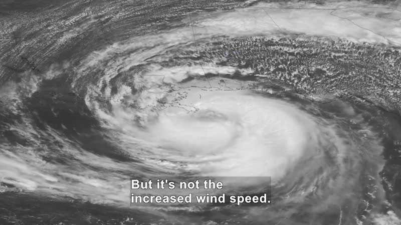 Still image from Uno Dos of Trace: Are Hurricanes ACTUALLY Getting Worse?