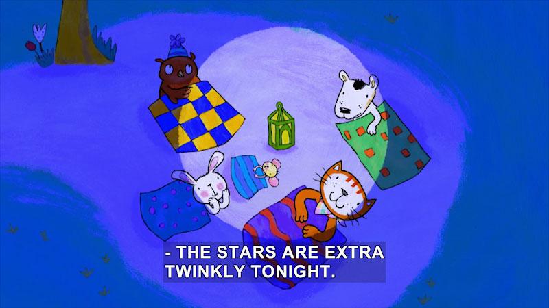 Still image from Poppy Cat: Starry Night