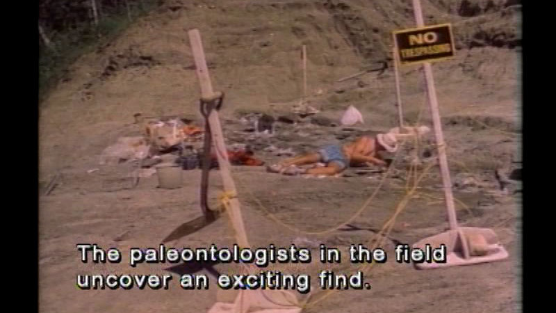 Still image from Dinosaurs!  Dinosaurs!
