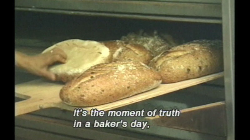 Still image from Bread Comes To Life