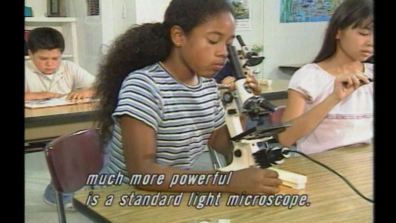 Still image from The Incredible World Of The Microscope