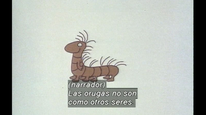 Still image from The Caterpillar And The Polliwog (Spanish)