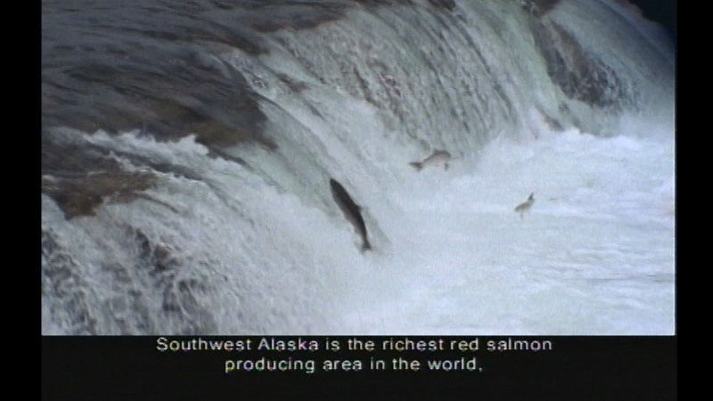 Still image from Alaska's National Parks:  Treasures Of The Great Land