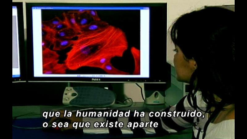 Still image from Vox Populi-Science (Spanish)