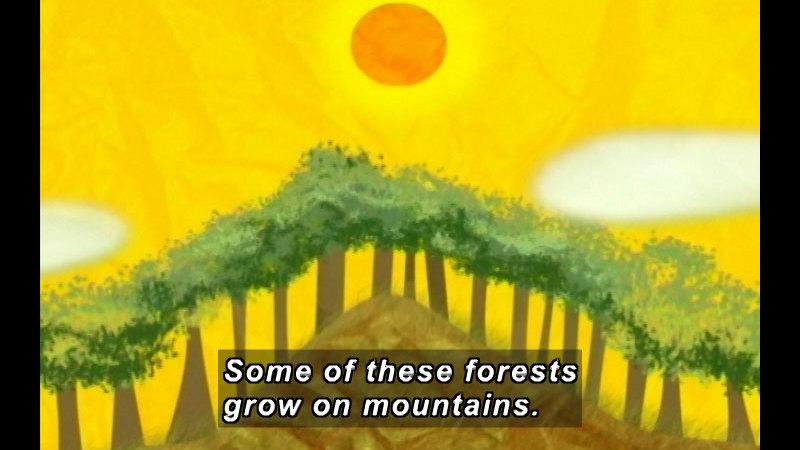 Still image from Moko: Tears From Tall Trees