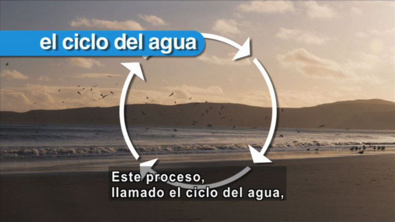Still image from Science Video Vocab: Water Cycle (Spanish)