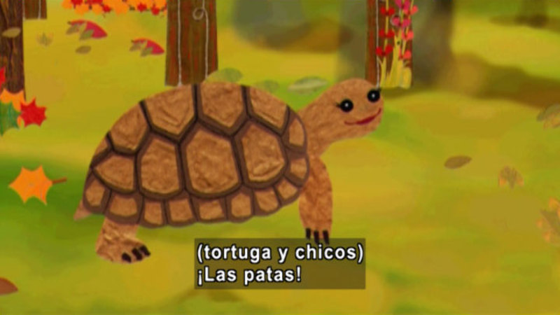 Still image from Animapaka: Turtle (Spanish)