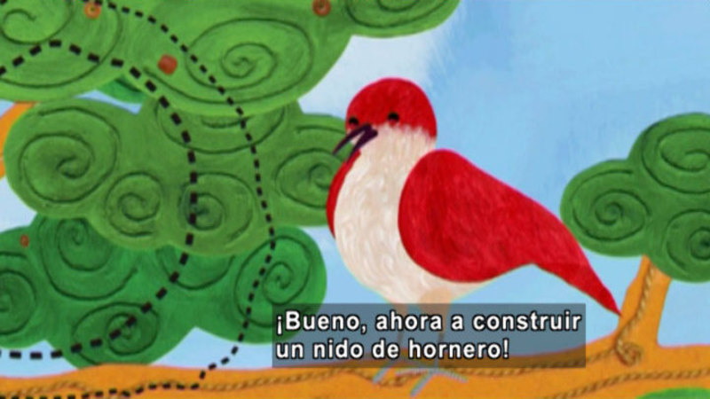 Still image from Animapaka: Ovenbird (Spanish)