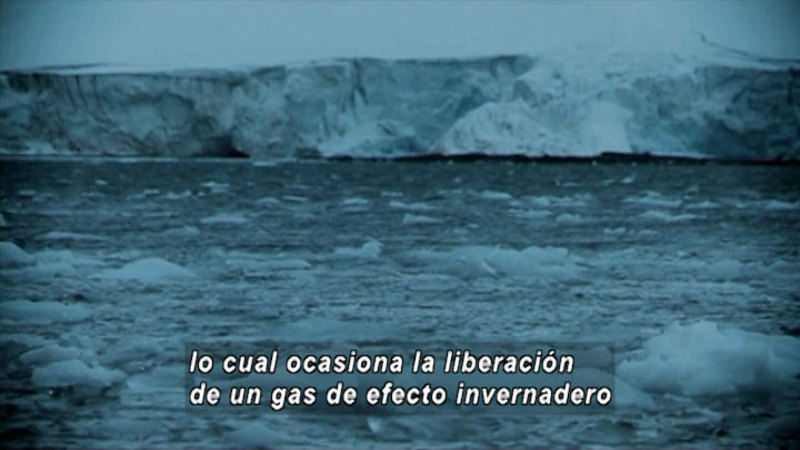 Still image from What Are The Effects Of Climate Change On Antarctica (Spanish)
