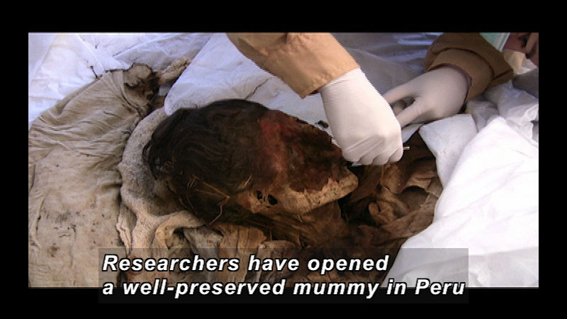Still image from Wild Chronicles: Peruvian Mummy
