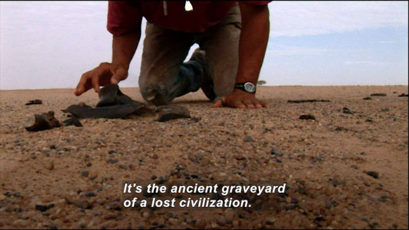 Still image from Wild Chronicles: Human Fossils In The Sahara