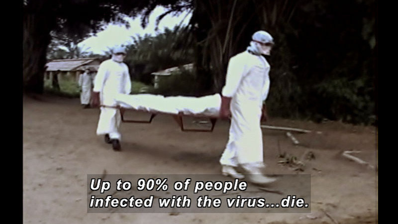Still image from Wild Chronicles: Ebola