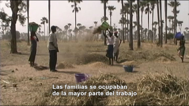 Still image from Social Studies Video Vocab: Agriculture (Spanish)