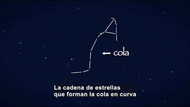 Still image from Science Video Vocab: Constellation (Spanish)