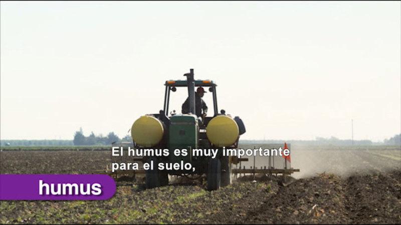 Still image from Science Video Vocab: Soil (Spanish)