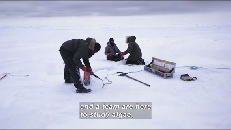 Still image from Science Nation: Researchers Crack the Ice to Study the Arctic Marine Food Web