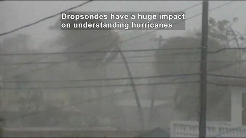 hurricane forecasting Students can be asked to keep a daily log of their storm prediction and then each day that prediction can be reviewed and updated comparisons can be made.
