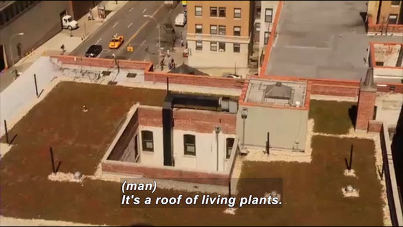 Still image from Science Nation: Green Roofs
