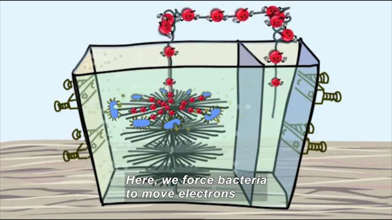 Still image from Green Revolution: Microbes