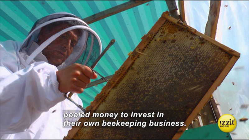 Still image from Bee The Change