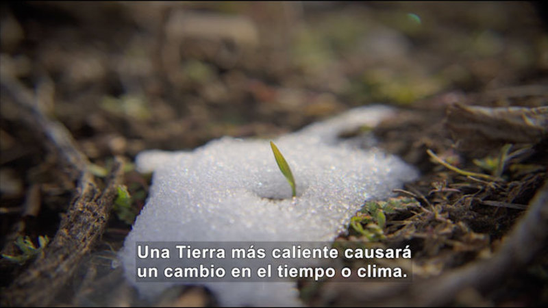 Still image from Science Video Vocab: Greenhouse Effect (Spanish)