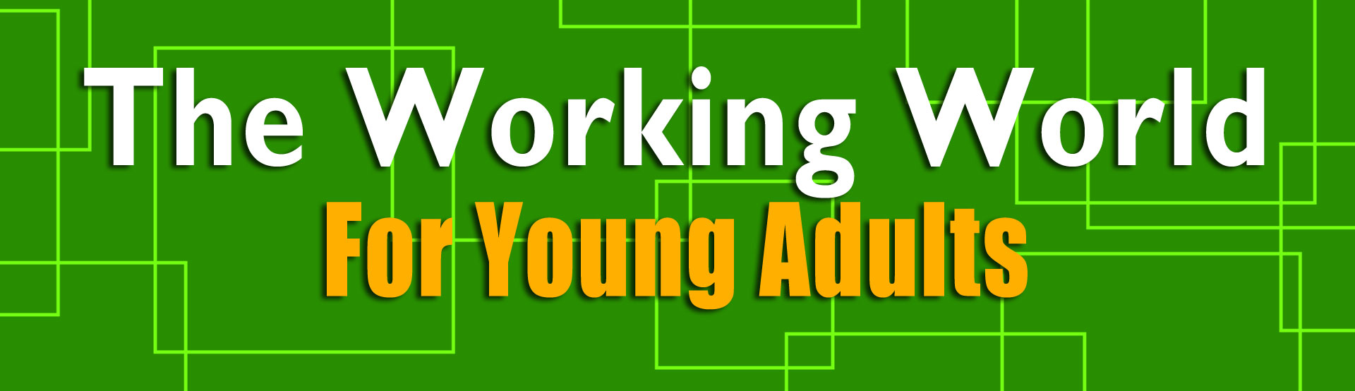 The Working World For Young Adults