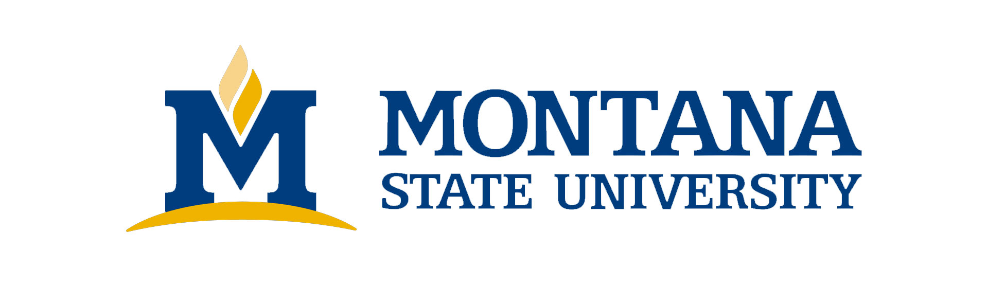 Image for Montana State University